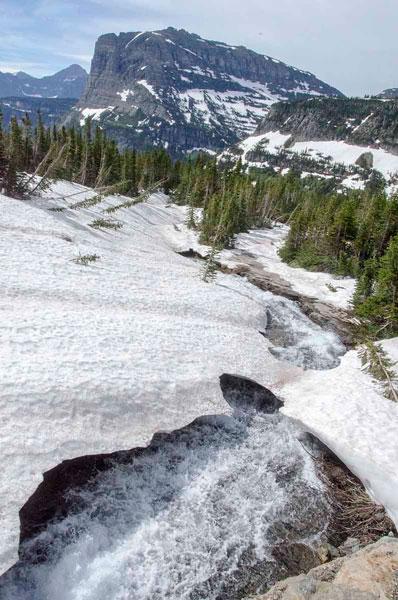 Lunch Creek, Logan Pass, Glacier National Park