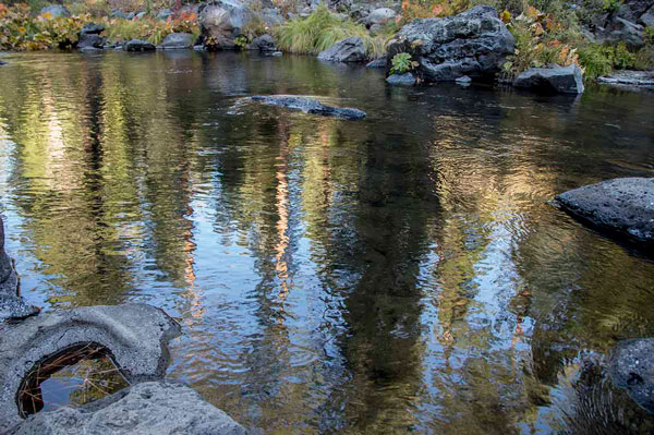 Reflections, McCloud River